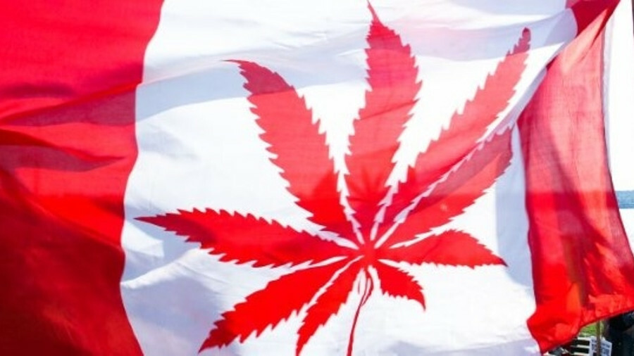 Canada and cannabis: don't get baked on the bridge