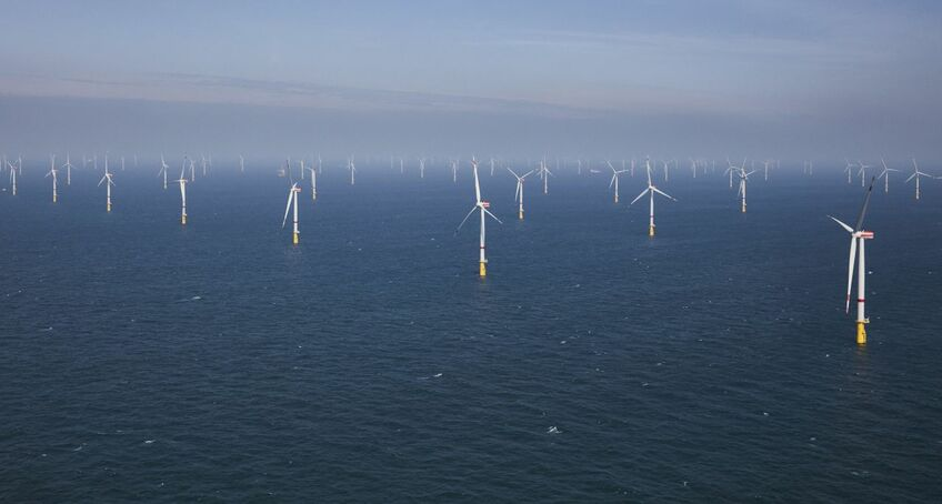 The Albatros offshore windfarm is adjacent to the Hohe See project