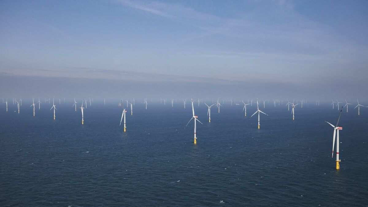 Blockage and wake effects won't undermine offshore wind's investment case