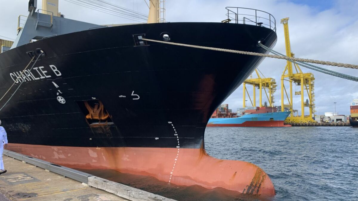 PT Shipmanagement has five box ships and is working on several  projects to gain more tonnage