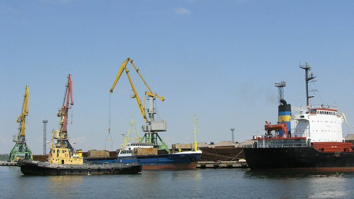 Ships and tugs in Ukraine Port of Olvia terminal (credit: Olvia Stevedoring company)