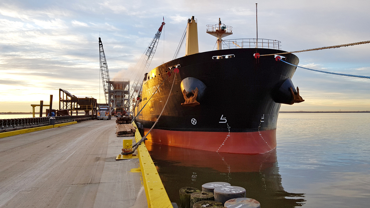 Minship-managed bulk carrier MV Trudy (pictured) is undergoing a biofuel trial (credit: Minship)