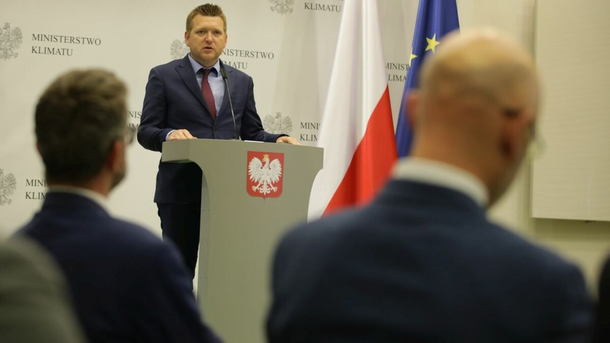 """Polish Wind Energy Association president Janusz Gajowiecki said the grid connection plan outlined in the draft was """"an optimal solution"""""""