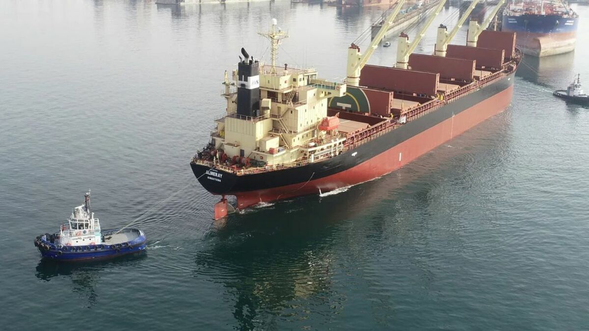 Zeetug Gisas Power in action towing a bulker in Turkey (source: Navtek)