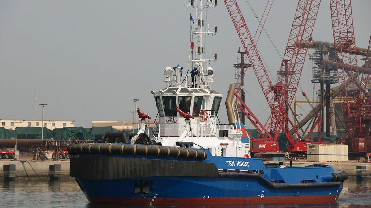 Damen built TSM Houat to ASD Tug 2810 design with 60 tonnes bollard pull (source: Damen)