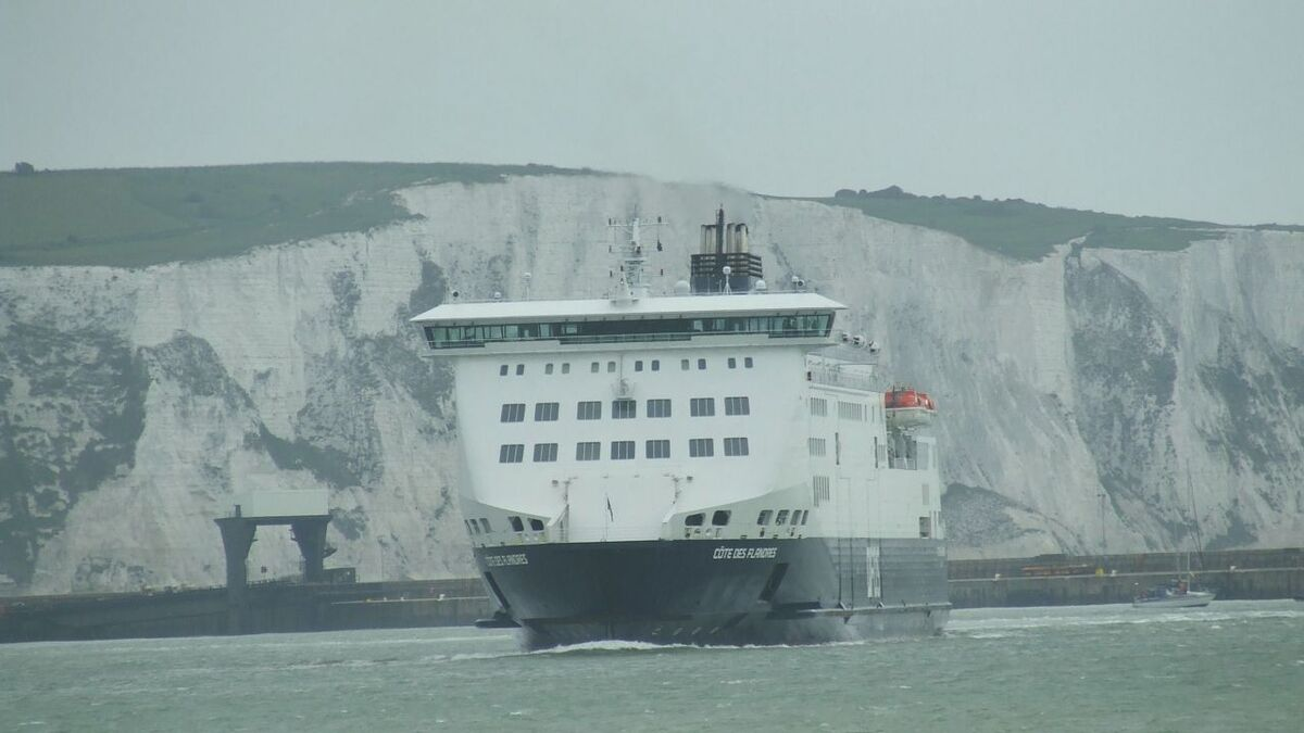 DFDS could test biofuels across its ferry fleet as part of its climate action strategy (source: RMM)