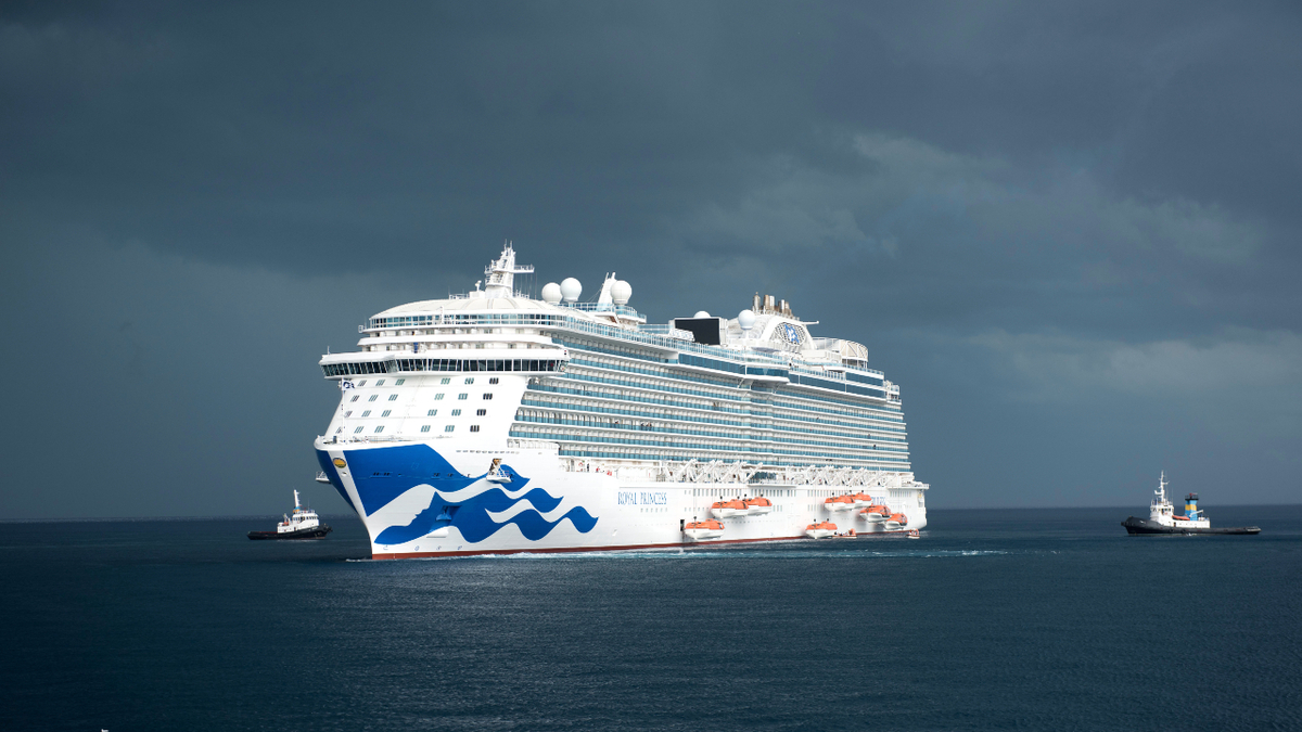 Princess Cruises was among the Carnival brands that extended their pause on cruising in 2021 (source: Princess Cruises)