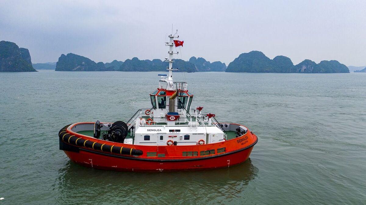 RSD Tug 2513 Senglea was built by Damen in Vietnam (source: Damen)