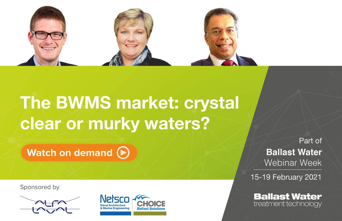 The panel for The BWMS market: crystal clear or murky waters? webinar
