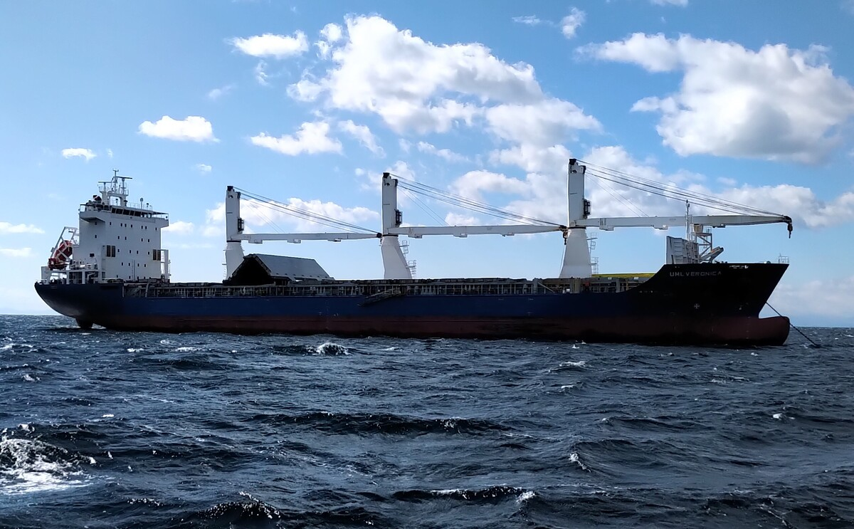 Held Shipping monitors voyage performance of its dry cargo ships (source: Held)