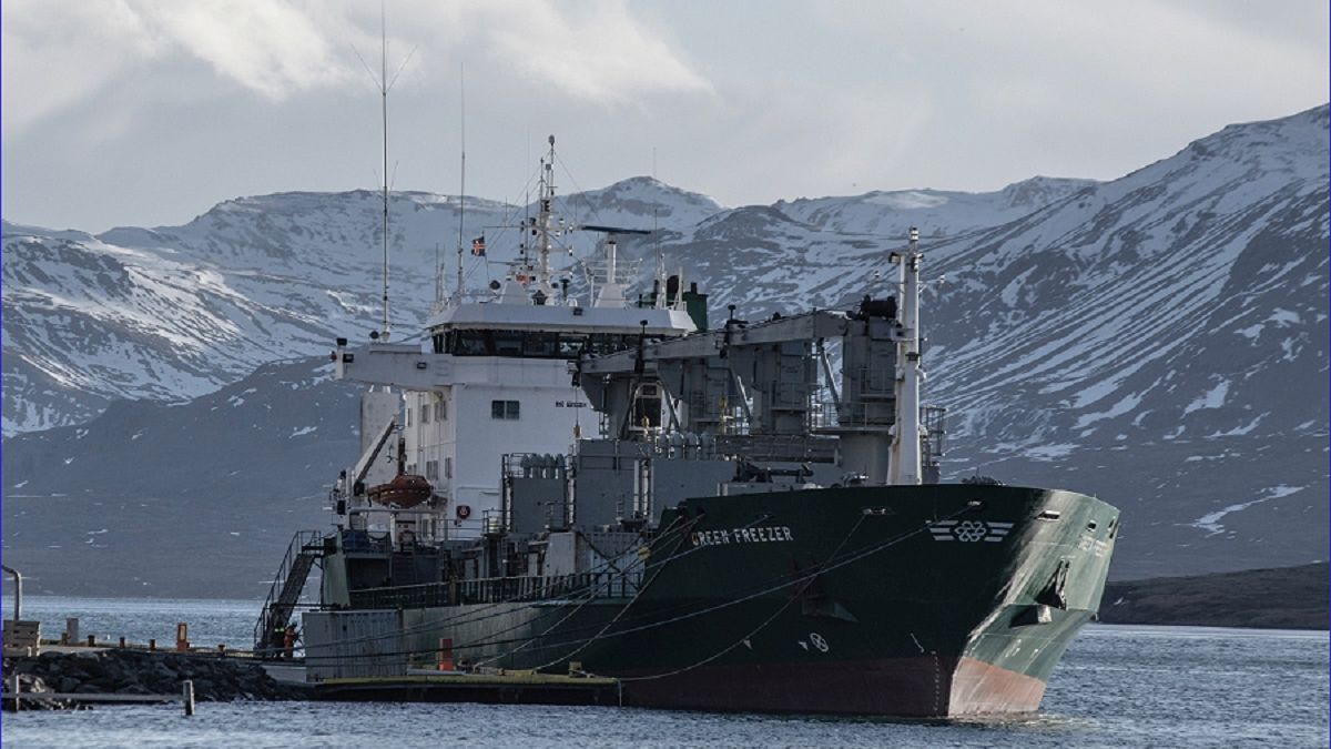 Green Freezer: The first ship from Green Reefers to install NGT BWMS (source: NGT)