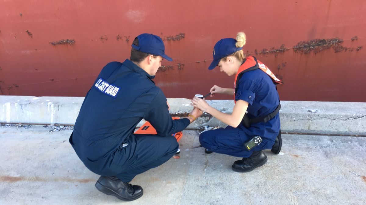 The USCG or PSC will check the BWMS has been approved and installed correctly (source: USCG)