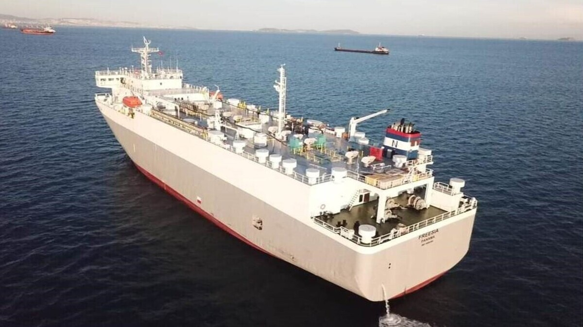 Freesia is the second conversion of a vehicle carrier to a livestock carrier that IRClass has undertaken for vessel owner Etab Shipping (Source: Indian Register of Shipping)